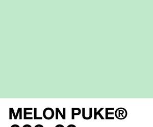melon, green, and pantone image