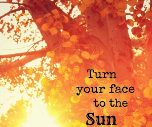 quotes, sun, and shadows image