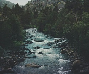 river, nature, and tree image