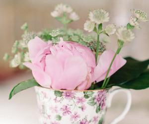 flowers, peonies, and vintage image