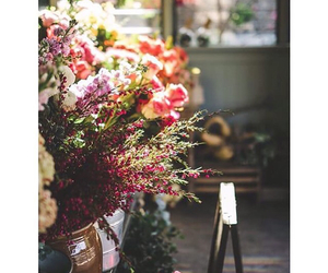 flowers, happiness, and romantic afternoon image