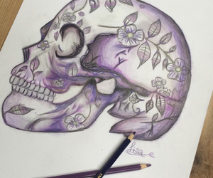 skull, bones, and colors image