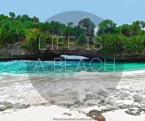 beach, life, and Island image
