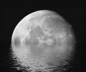 black, moon, and nature image