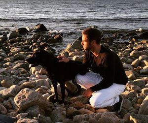 beach, mans zelmerlow, and dog image