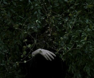 grunge, nature, and pale image