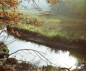 autmn, forest, and lake image