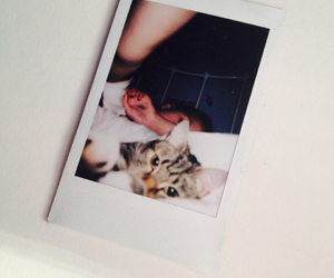 cat, girl, and polaroid image