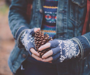 autumn, winter, and hipster image