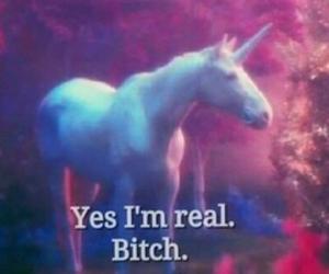 unicorn, real, and bitch image