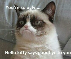 funny, grumpy cat, and goodbye image