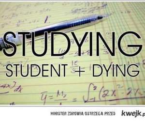 dying, student, and text image