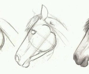 draw and horse image