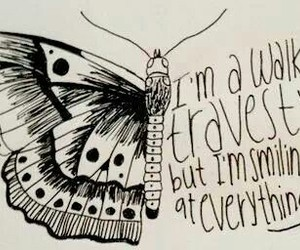 all time low, Lyrics, and butterfly image