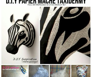 diy and zebra image