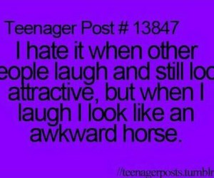 funny, horse, and attractive image