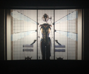 Marvel, wasp, and ant man image