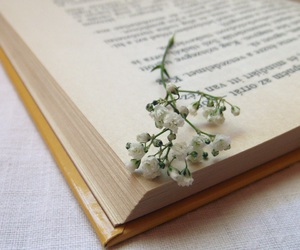 book, magyar, and books image
