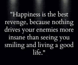 happiness, life, and quote image