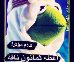 ﻋﺮﺑﻲ, عًراقي, and ضفدع image