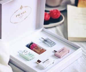 Prada, beauty, and cool image