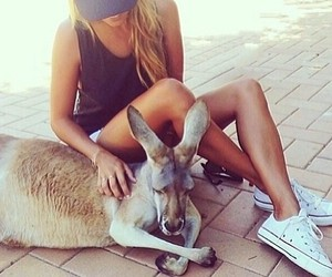 animal, girl, and kangaroo image