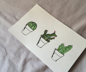 bedroom, summer, and cactus image