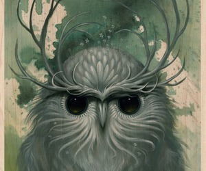 owl, art, and Jeff Soto image
