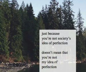 quote, perfection, and love image
