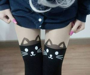 cat and socks image