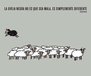 sheep, diferente, and oveja negra image