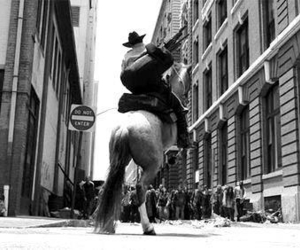 the walking dead, twd, and horse image
