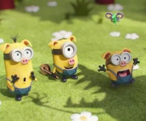 minions, pigs, and cute image