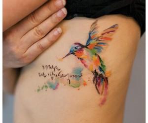 amazing, art, and bird image