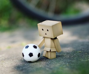 football, danbo, and soccer image