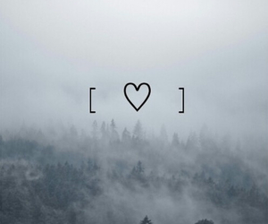 forest, heart, and landscape image