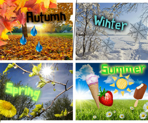 autumn, seasons, and summer image