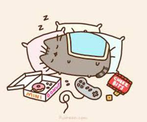 cat, pusheen, and donuts image