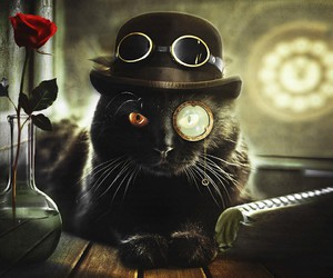 cat and steampunk image