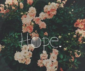 flowers, hope, and pink image