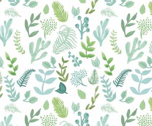 botany, leaf, and wallpaper image
