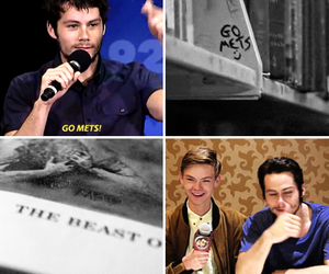 funny, dylan o'brien, and tw cast image