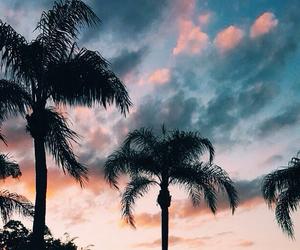 beach, boys, and palm springs image