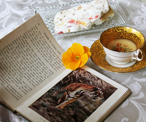 book, books, and cup image