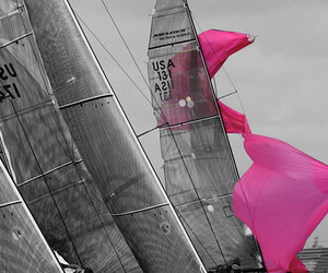sail and spinnaker image