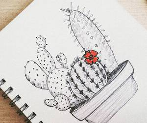 cactus, drawing, and red image