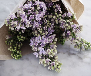 flowers, bouquet, and lilac image