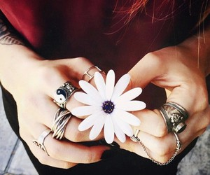 flowers, rings, and accessories image