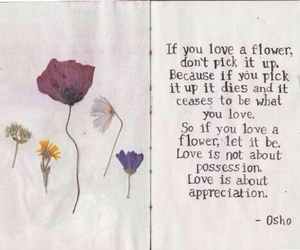 flowers, love, and quotes image