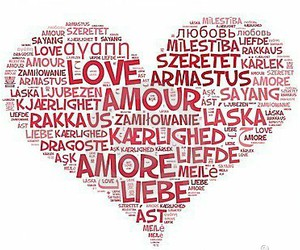 amour, heart, and liefde image